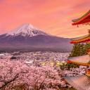Japanese Words 1