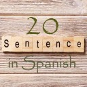 Learn 4500 Spanish sentences used in daily life Part 20 of 50