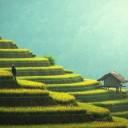 Dans cette leçon, vous apprendrez des informations générales sur Bali. L'île indonésienne est la destination de vacances idéale. Des plages de rêve et des temples historiques vous attendent