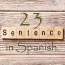 Learn 4500 Spanish sentences used in daily life Part 23 of 50