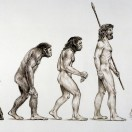 Thema: Evolutionstheorie